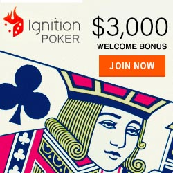 Ignition poker banner